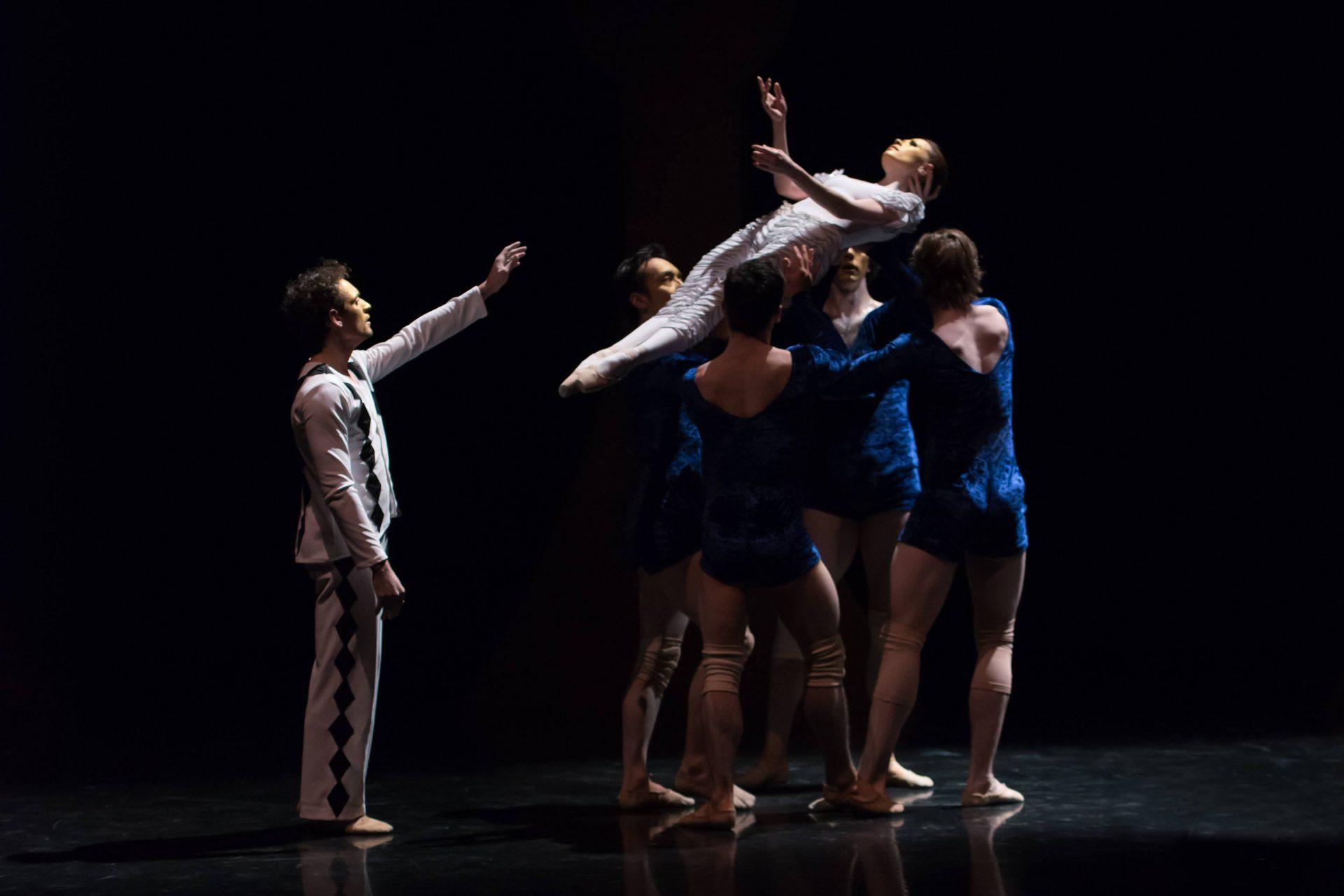 Bouffonia Performance Shot